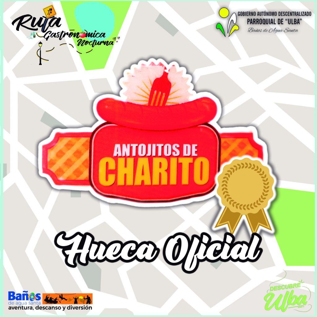 DELICIAS DE CHARITO GAD ULBA